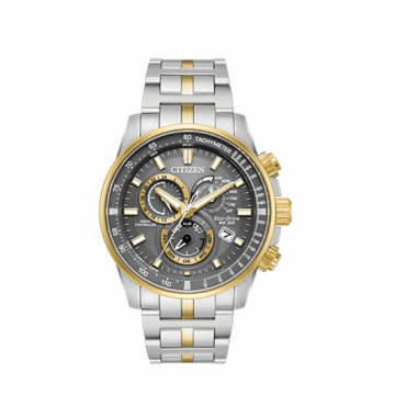 Men's Two-Toned Stainless Steel Citizen Watch