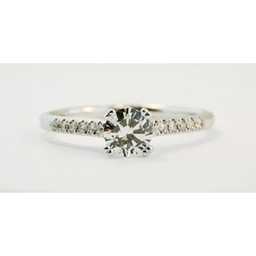 Nelson Lady's White 18 Karat Cathedral Clasic Engagement Ring